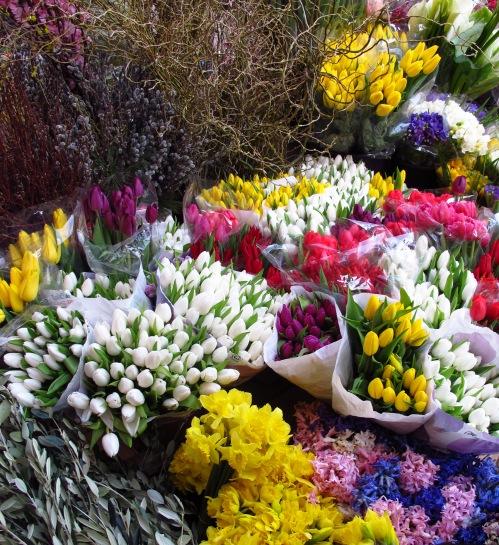 zagrebflowers